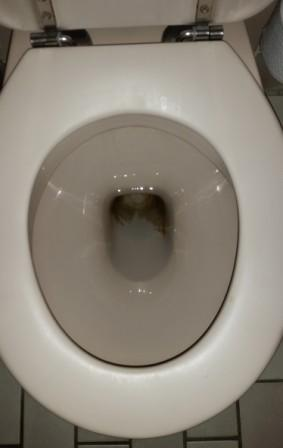 bruine aanslag in toilet of urinoir